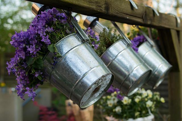 Cosa coltivare sul balcone in primavera?