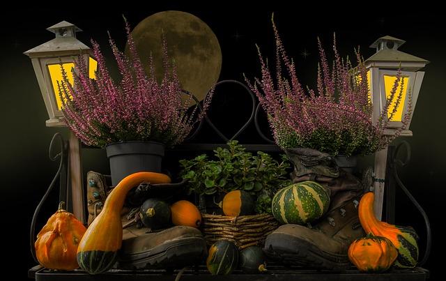 Cosa mangiare in autunno? Ecco 3 ricette facili e veloci