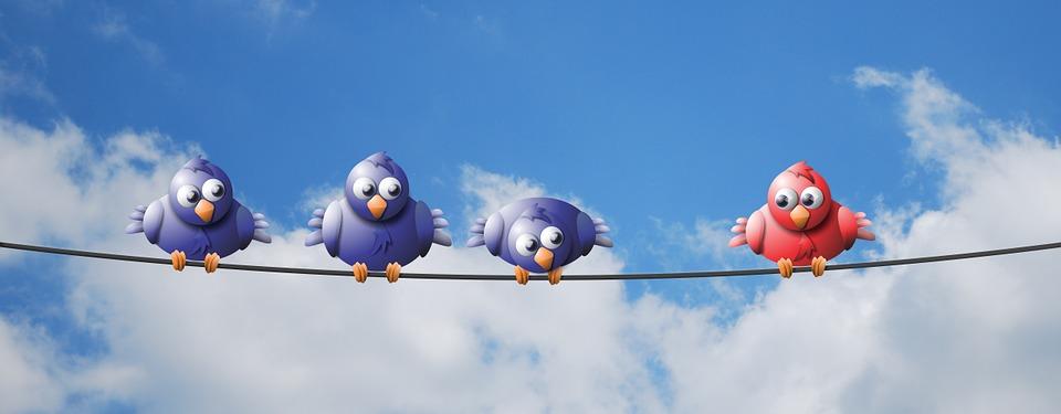 Perché gli uccelli sui fili della corrente non prendono la scossa?