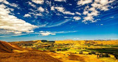 3 stranezze sulla Nuova Zelanda